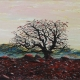 """Tree in the desert"" oil painting Bogomol"